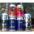 Craft Beer Selection Box with 12 Cans