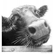 Co Cow Chanel Framed Cow Print 20x20cms
