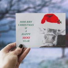 Moory Christmas -  The Greeting Card