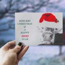 Moory Christmas  -  Pack of 6 Greeting Cards