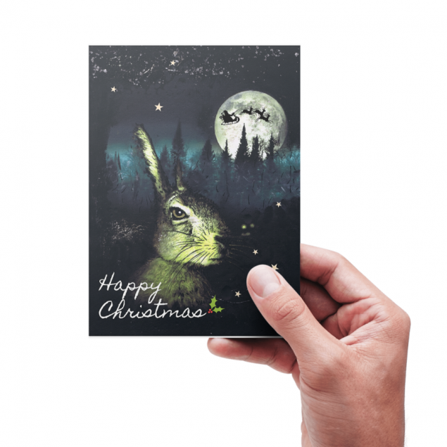 The Christmas Hare  -  Pack of 6 Christmas Greeting Cards
