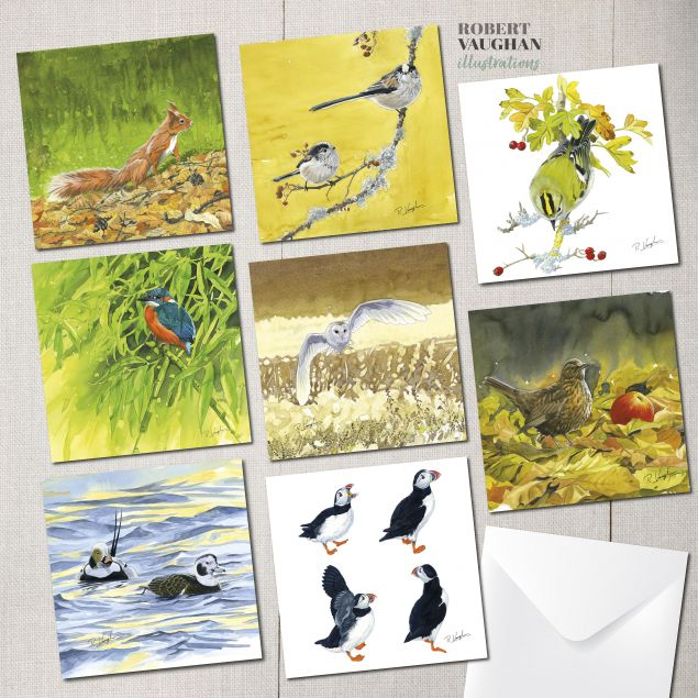 Pack of 8 Wildlife Design Greeting Cards