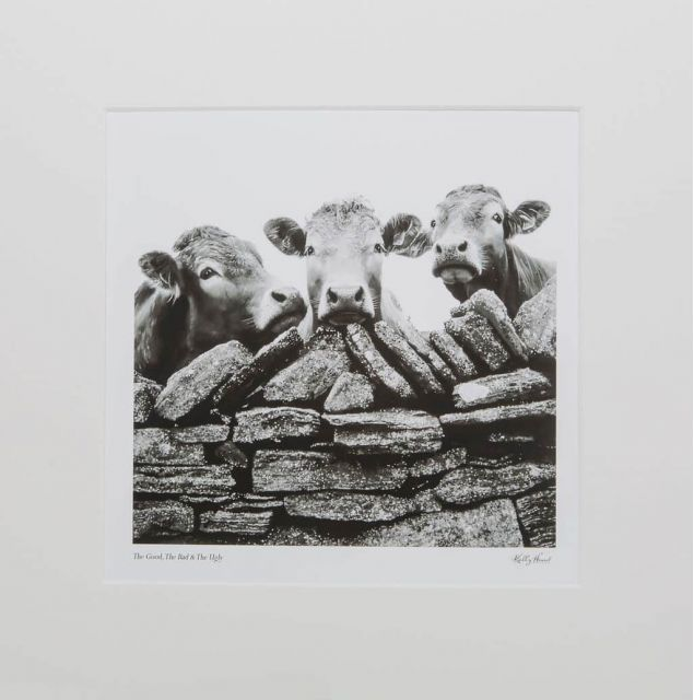 The Good The Bad and The Ugly Mounted Limited Edition Jersey Cow Print